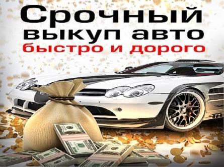 Инвестируем в номерах удаленный кредит как получить